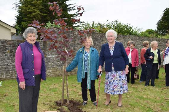 One hundred years of the WI movement celebrated at Llanblethian 'planting'