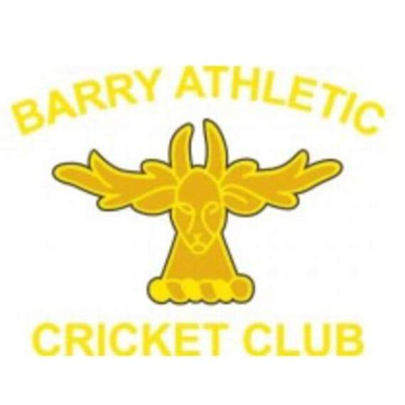 Barry Athletic firsts slump to defeat